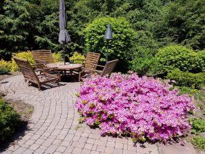 Backyard Landscaping RE Marshall Nursery Rockford Il